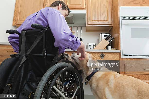 man with spinal cord injury petting his service dog in an accessible kitchen - disabled access stock photos and pictures