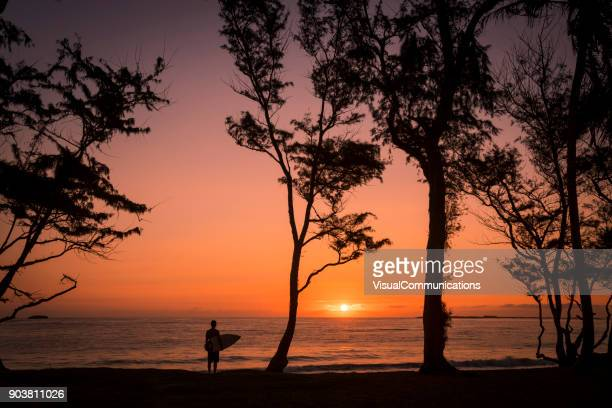 man with surfboard standing on beach watching sunrise. - wonderlust stock photos and pictures