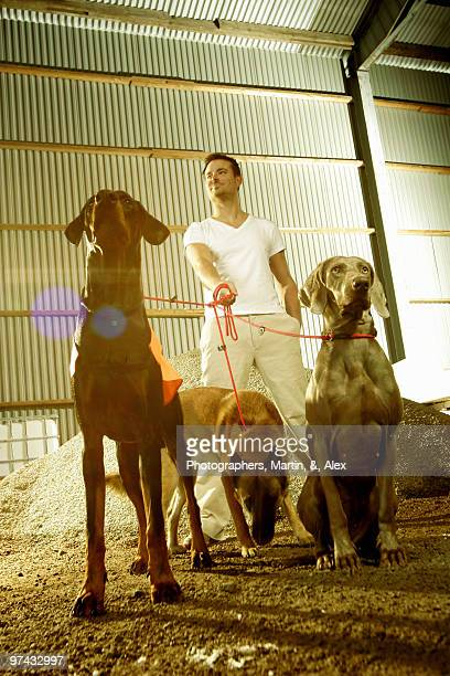 Man with three dogs, Sweden.
