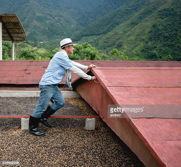Man working at a Colombian coffee farm