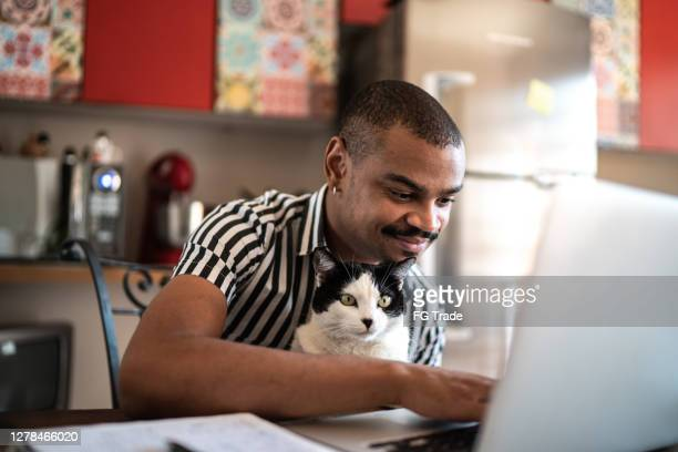 man working at home with his domestic cat - cats stock pictures, royalty-free photos & images
