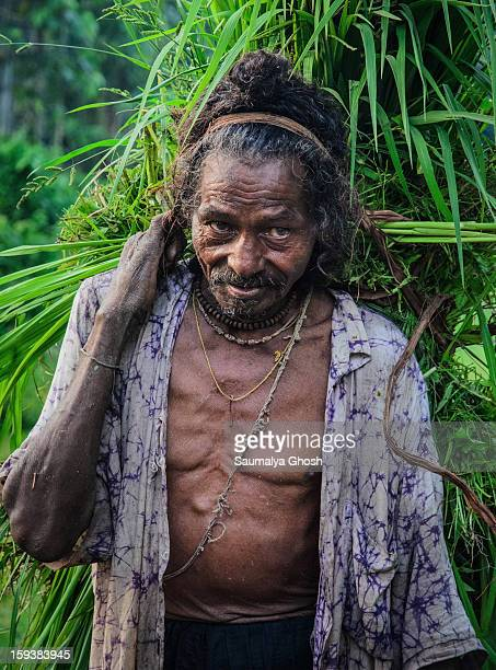 Man working in a forest of Dooars region in the foothills of Himalayas.