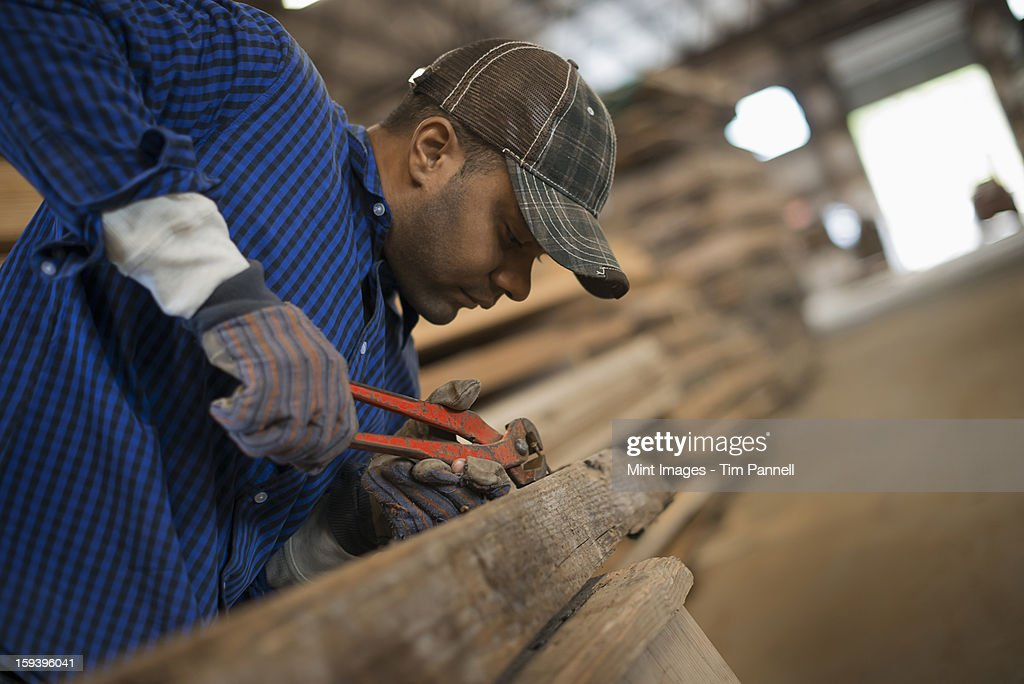 A man working in a reclaimed timber yard. Using a tool to remove metals from a reclaimed piece of timber. Workshop. : Stock Photo