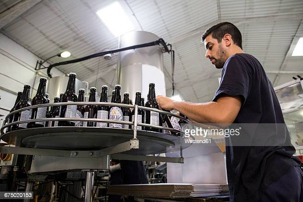 Man working in beer bottling plant