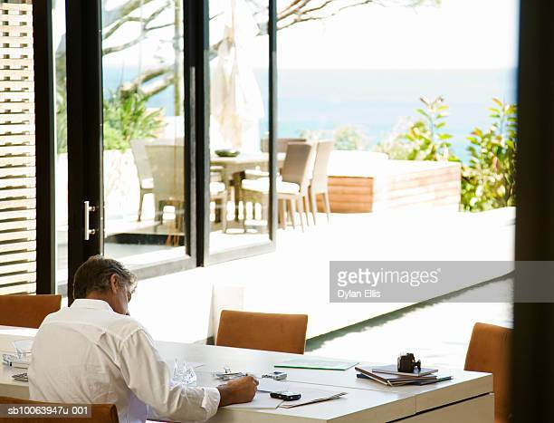 Man working in home office, rear view