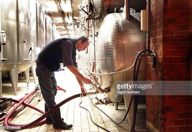 man working in industrial wine cellar - sigrid gombert stock-fotos und bilder