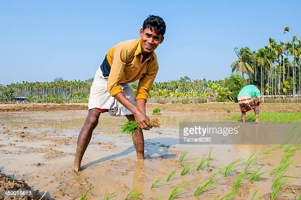 Man working in paddy field