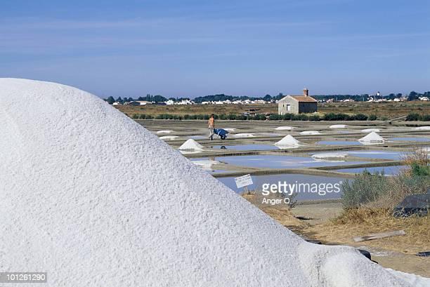man working in salt pan, ile de noirmoutier, france - noirmoutier photos et images de collection