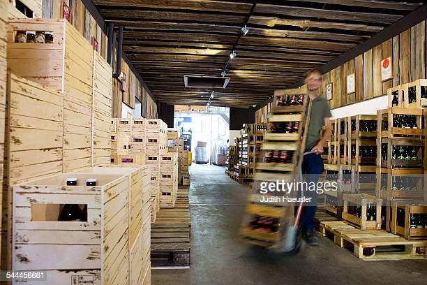 Man working in wine warehouse