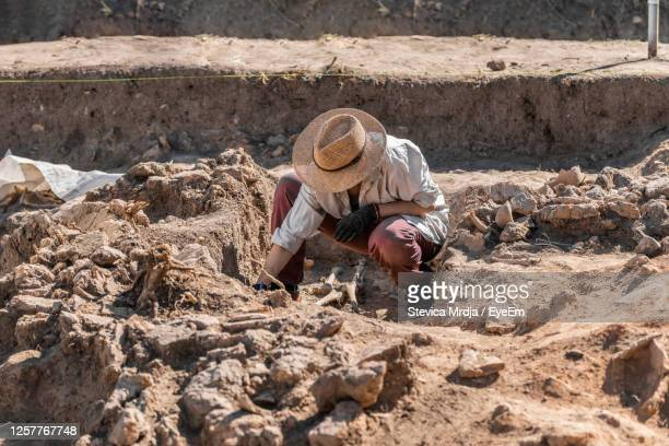 man working on rock - archaeology stock pictures, royalty-free photos & images