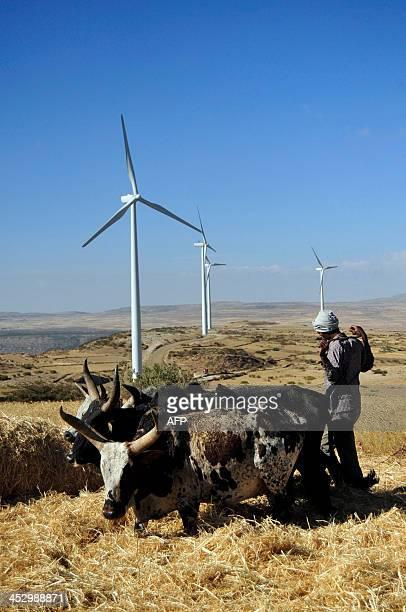 VAUGHAN A man works along a road near turbines at Ashegoda wind farm in Ethiopia's northern Tigray region on November 28 2013 The farm built by...