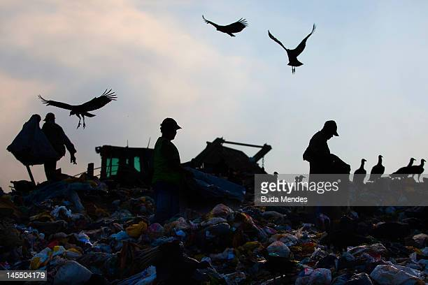 A man works among rubbish at Jardim Gramacho the biggest open air garbage dump in Latin American on its closing day on May 31 2012 in Rio de Janeiro...