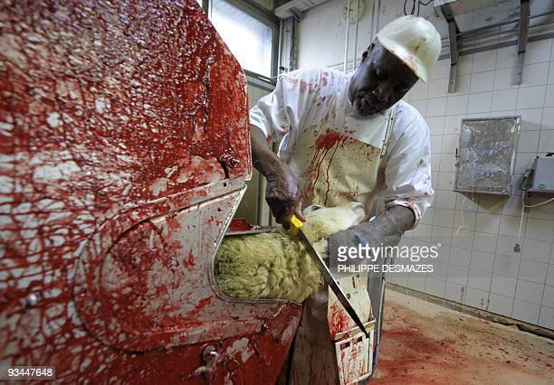 A man works at an automated sheep slaughter line on November 27 2009 at Corbas slaughterhouse near Lyon eastern France The religious holiday Eid...