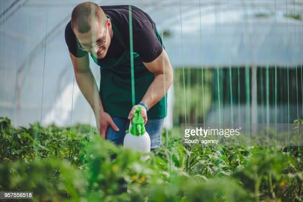 Man works on farm