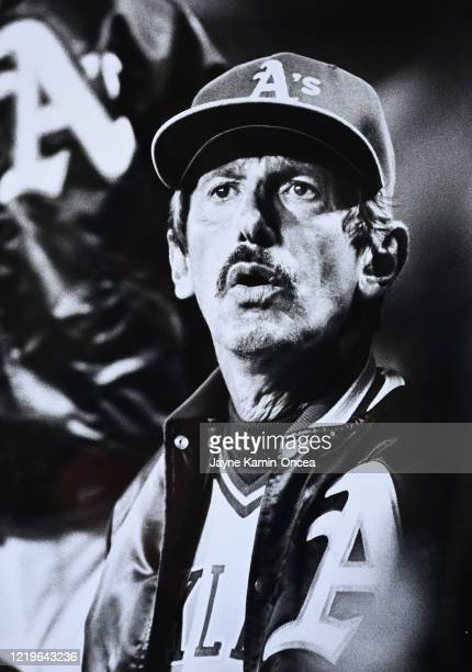 Manager Billy Martin of the Oakland A's sits in the dugout during a game against the California Angels at Anaheim Stadium Anaheim California