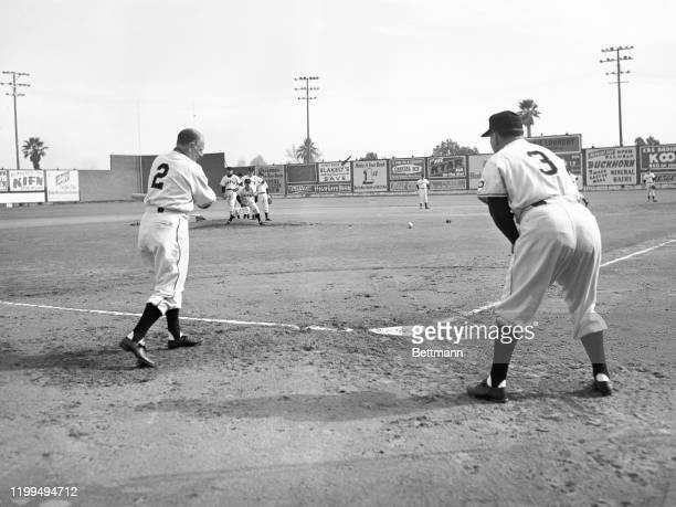 Manager Leo Durocher hits a few grounders to a flock of pitchers during infield practice at the New York giants' spring training camp at Phoenix....