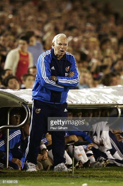 Manager Luis Aragones of Spain shouts orders from the touchline during the group seven 2006 World Cup qualifying match between Spain and Belgium at...