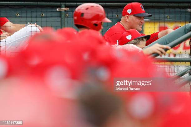 Manager Mike Shildt of the St Louis Cardinals looks on against the Detroit Tigers during the Grapefruit League spring training game at Roger Dean...