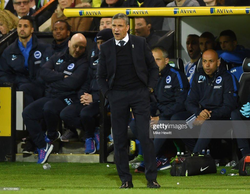 Norwich City v Brighton & Hove Albion - Sky Bet Championship : News Photo