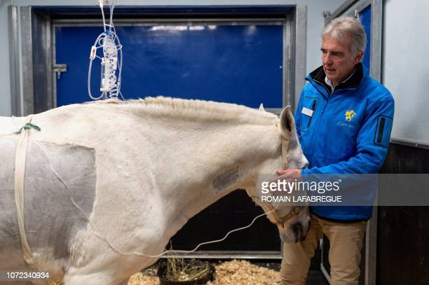 Manager of the Equine Health Centre Olivier Lepage stands next to a horse before a surgery at the equine clinical 'Clinequine' on November 20 in...