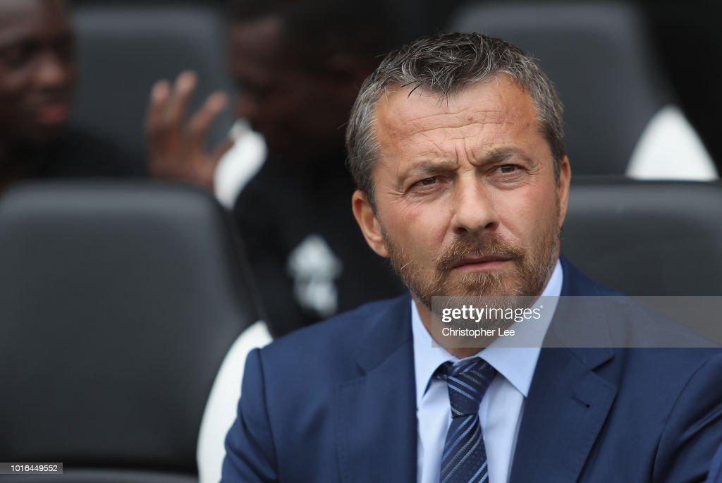 Fulham FC v Crystal Palace - Premier League : News Photo