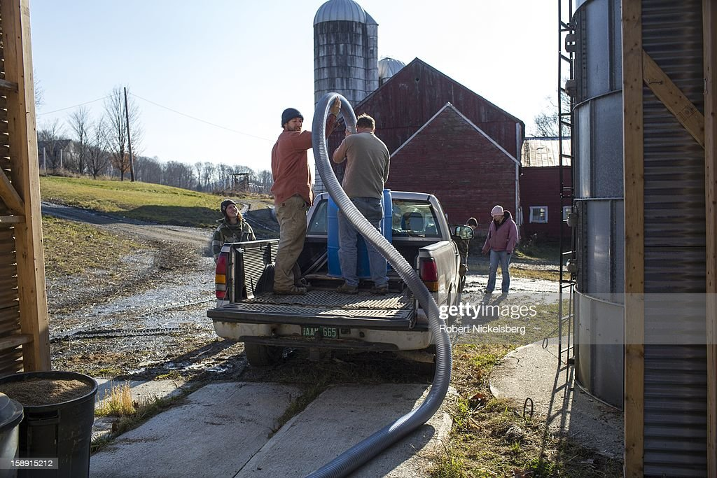 Managers of a nearby fruit and vegetable farm use a vacuum tube to transport black beans to a screening filter December 14, 2012 on John Williamson's farm in North Bennington, Vermont. Local farmers collaborate using machinery each farm may or may not have during a crop harvest. Williamson's third-generation family farm sold off their dairy cattle and now run the farm as a pilot project for oil seeds to produce biodiesel and seed oils in a sustainable manner. Local Vermont farmers send their oil seeds to Williamson's farm for crushing and for making biodiesel fuel that Williamson charges for. Williamson's biodiesel project has received grants from the University of Vermont and the Department of Energy.