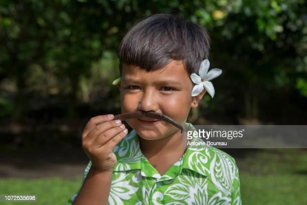 """manarii, child of 5 years old smeling a vanilla bean of tahiti, in the place called """"valley of the vanilla"""", tahaa island, leeward islands, society islands, french polynesia - french polynesia stock pictures, royalty-free photos & images"""