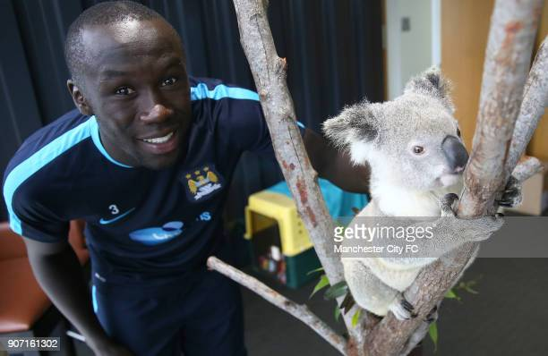 Manchester City Pre Season Tour of Australia Adelaide United v Manchester City Cbus Super Stadium Kelechi Iheanacho Bacary Sagna poses with a Koala...