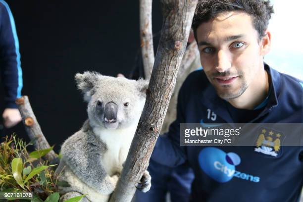 Manchester City Pre Season Tour of Australia Training Session Cbus Super Stadium Manchester City's Jesus Navas poses with a Koala brought in by...