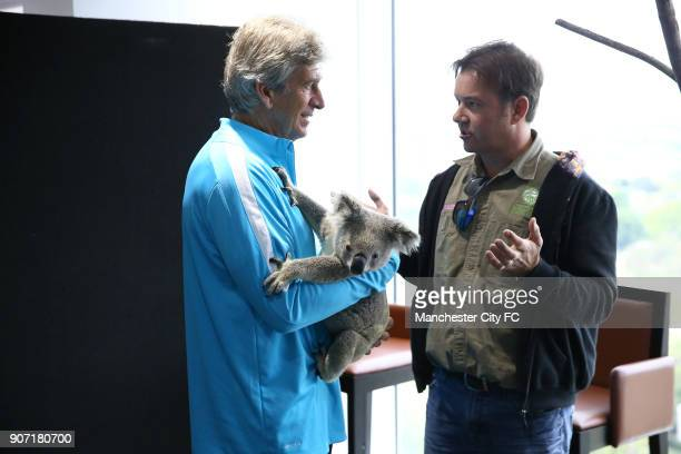 Manchester City Pre Season Tour of Australia Training Session Cbus Super Stadium Manchester City manager Manuel Pellegrini poses with a Koala brought...