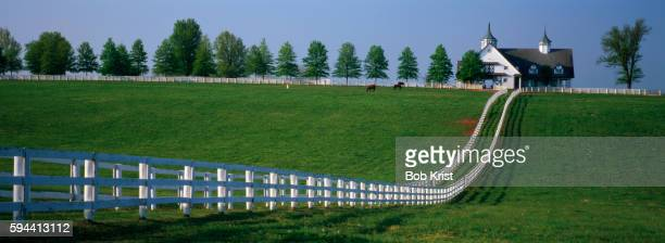 manchester farm in kentucky - hacienda manchester stock pictures, royalty-free photos & images