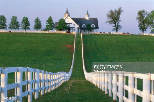 manchester farm - hacienda manchester stock pictures, royalty-free photos & images