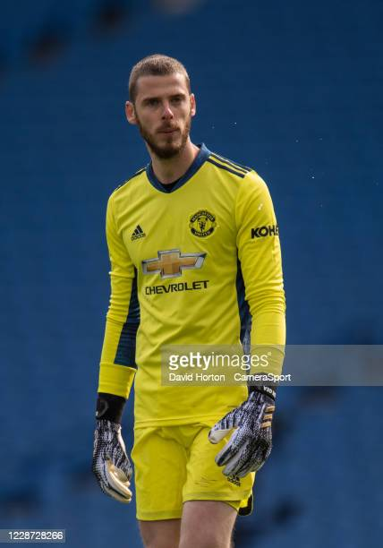 Manchester United's David De Gea during the Premier League match between Brighton Hove Albion and Manchester United at American Express Community...