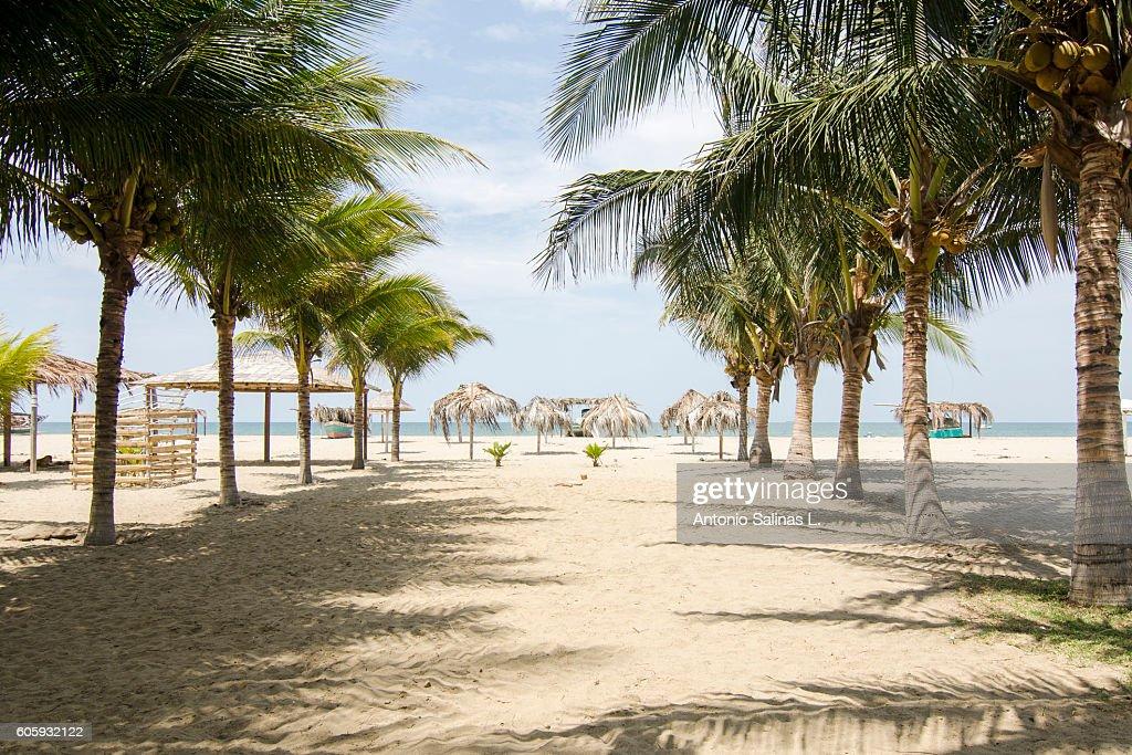Mancora Idyllic beach at the north of Perú : Stockfoto