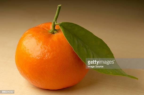 mandarin on brown background - ミカン ストックフォトと画像