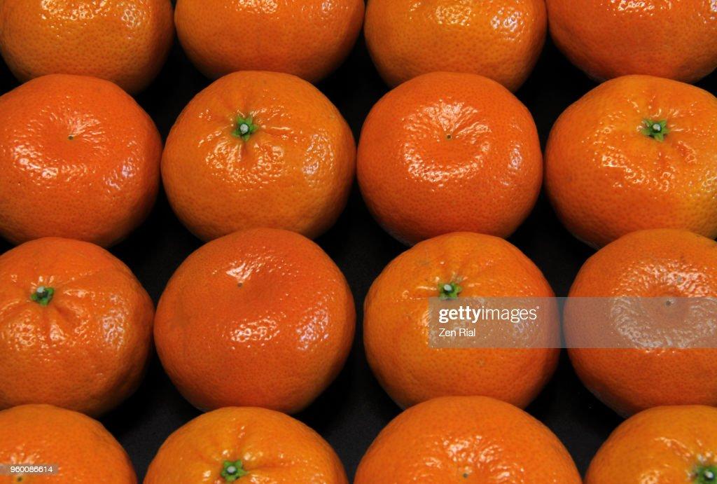Mandarine orange (citrus reticulata) fruits arranged side by side on black background : Stock-Foto