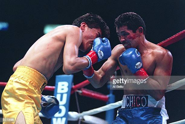 LANDS A RIGHT ON JORGE MONZON DURING THEIR BOUT AT THE FORUM INGLEWOOD LOS ANGELES Mandatory Credit Al Bello/ALLSPORT