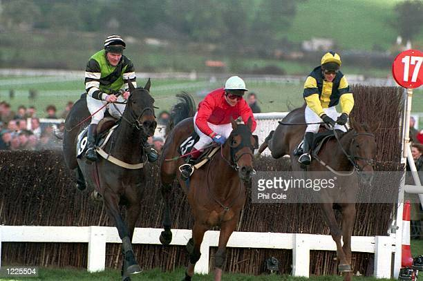 AND 'THE FELLOW' JUMP FENCE 17 FIRST ON THEIR WAY TO VICTORY IN THE CHELTENHAM GOLD CUP NARROWLIY EDGING OUT FAVOURITE 'JODAMI' Mandatory Credit Phil...