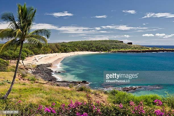 Manele Bay Hawaii