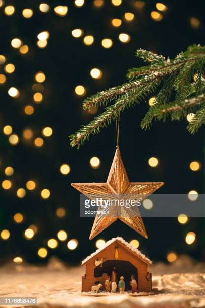 manger under a christmas tree - nativity stock photos and pictures