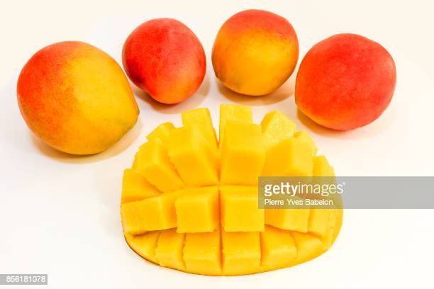 mango fruit - pierre yves babelon stock pictures, royalty-free photos & images