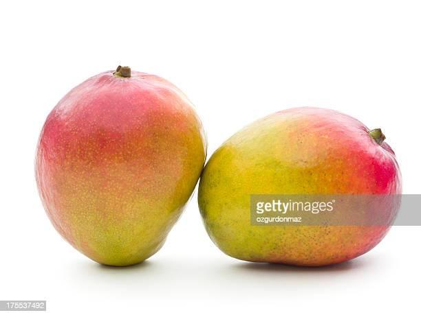Mango-Früchte