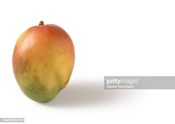 Mango, white background