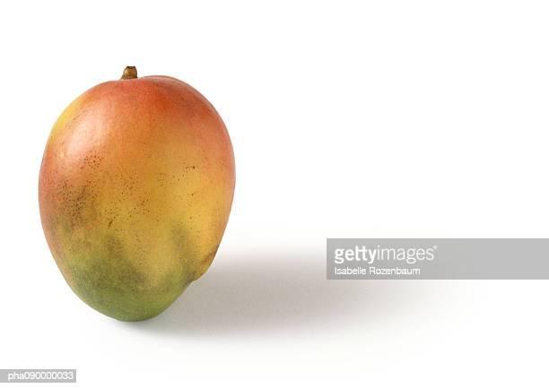 mango, white background - mango stock-fotos und bilder