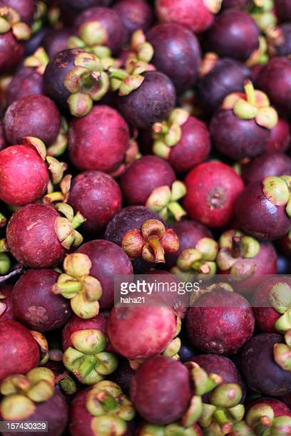 mangosteen exotic tropical fruit - mangosteen stock photos and pictures