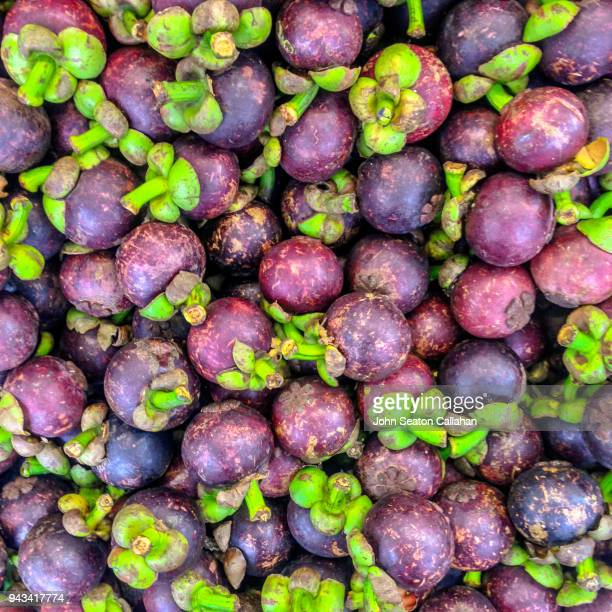 mangosteen fruit - mangosteen stock photos and pictures