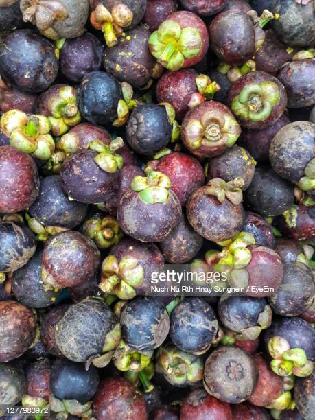 mangosteen queen of fruit - eyeem collection stock pictures, royalty-free photos & images