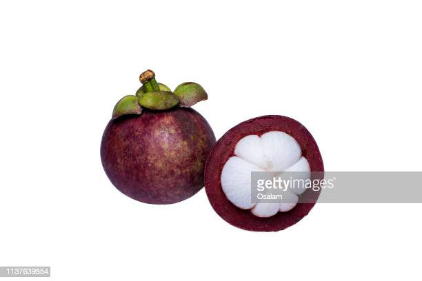 mangosteens against white background - mangosteen stock photos and pictures