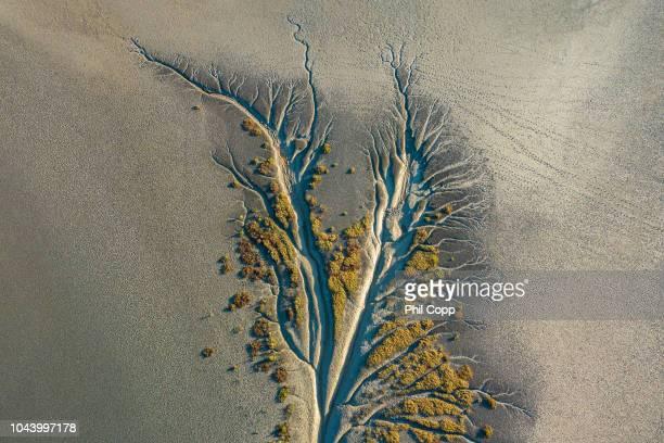 mangrove aerial - townsville australia fotografías e imágenes de stock