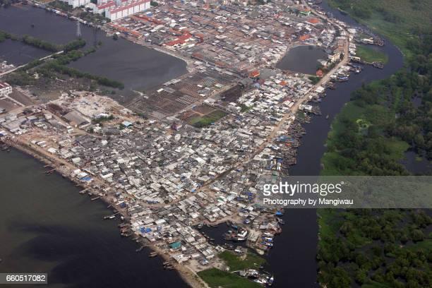 Mangrove Slum